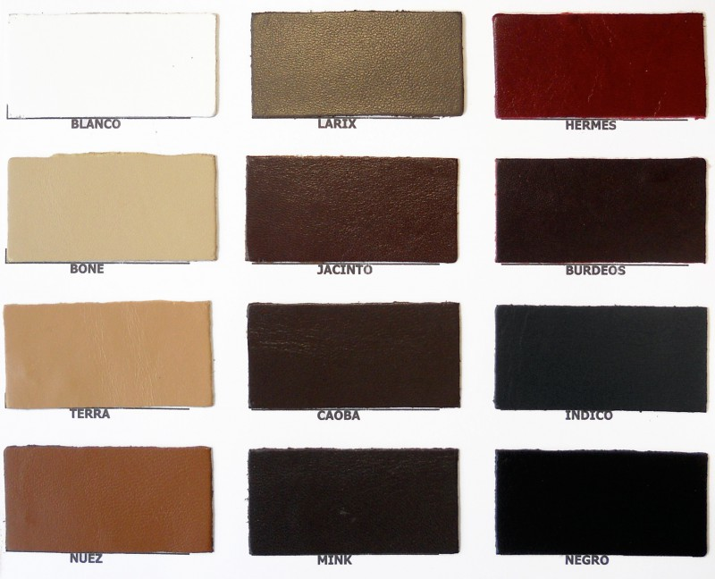 Carta Color Artículo Mestizos Copell