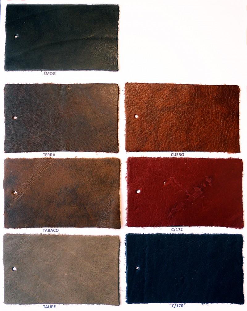 Carta Color Articulo Savana Copell